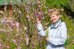 The mature woman costs among the blossoming bushes of almonds three-blade Stock Photography