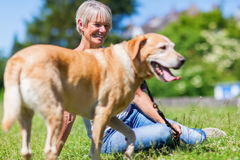 Mature woman with a dog outdoor Royalty Free Stock Images