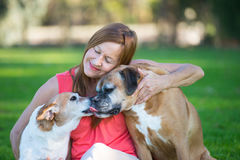 Mature woman with dog pets relaxed in park Royalty Free Stock Image