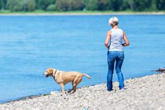 Mature woman with a dog riverside Stock Image