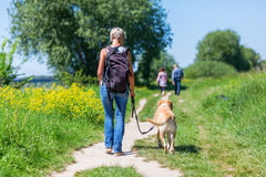 Mature woman with dog taking hiking in the country Royalty Free Stock Photos