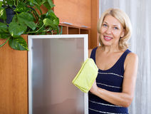 Mature woman dusting glass Stock Photography