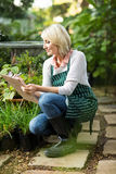 Mature woman examining plants Stock Photos