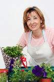 Mature woman florist Royalty Free Stock Photo