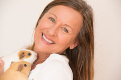 Mature woman with guinea pig pets. Portrait happy smiling attractive mature woman holding guinea pig pets, isolated, bright background Royalty Free Stock Image