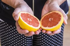 Mature woman hands take a grapefruit. colors and offer concept for healthy life and lifestyle. seasonal fresh fruit cutted in the. Middle. half measure stock photography