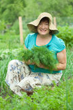 Mature woman with harvested dill Royalty Free Stock Photos