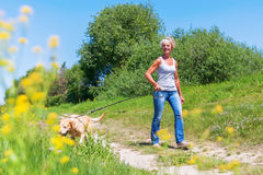 Mature woman hiking with dog in the landscape. Mature woman hiking with a labrador retriever in the summer landscape Royalty Free Stock Images