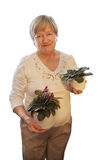 Mature woman holding a violet Stock Image