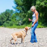 Mature woman with labrador riverside Stock Photography