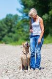 Mature woman with labrador riverside Stock Image