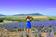 Mature woman in lavender field Stock Photography