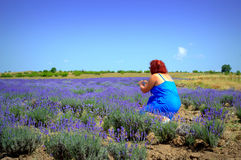 Mature woman in lavender flowers Royalty Free Stock Photography