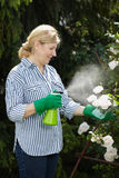Mature woman look after her garden, spray water Royalty Free Stock Photo
