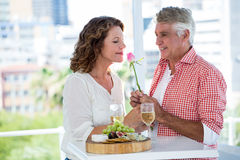 Mature woman with man smelling flower Stock Photos