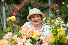 Mature woman orange roses Royalty Free Stock Image