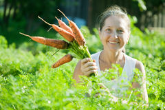 Mature woman  picking carrot Royalty Free Stock Photos