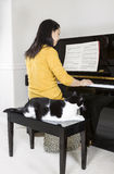 Mature woman playing piano with her family Cat by her side Stock Photos