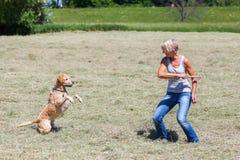 Mature woman plays with a labrador retriever Stock Photo