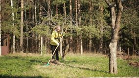 Mature woman raking leaves in a garden. On the background of spring forest stock video