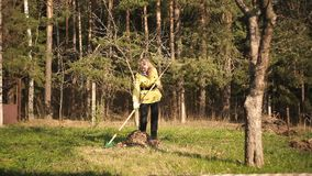 Mature woman raking leaves in a garden. On the background of spring forest stock footage