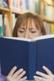 Mature woman reading concentrated a book Stock Photos