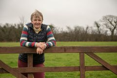 Mature woman resting on a wooden gate. In a green field royalty free stock photos