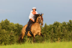 Mature woman riding an Andalusian horse Royalty Free Stock Photography