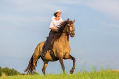 Mature woman riding an Andalusian horse Royalty Free Stock Photo
