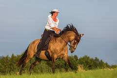 Mature woman riding an Andalusian horse Stock Images