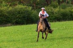 Mature woman riding an Andalusian horse Royalty Free Stock Photos