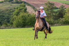 Mature woman riding an Andalusian horse Stock Photography