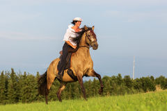 Mature woman riding an Andalusian horse Stock Photo