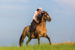 Mature woman riding an Andalusian horse Stock Image