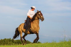 Mature woman riding an Andalusian horse Royalty Free Stock Images