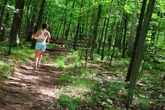 Mature Woman Runner. Mature woman running in forest stock photos