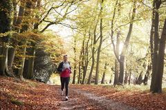 Mature Woman Running Through Autumn Woodland Stock Photography