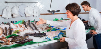 Mature woman selecting cooled fish at fishery Stock Images