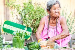 Mature woman is selling Thai traditional snack Royalty Free Stock Photos