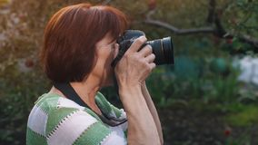 Mature woman shooting with photo camera stock video