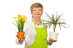 Mature woman showing plants pots Stock Photo