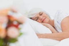 Mature woman sleeping Stock Image