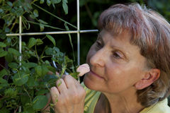 Mature woman smelling a rose Stock Images