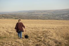 Mature woman and terrier dog walking through a meadow. With copy space royalty free stock photos