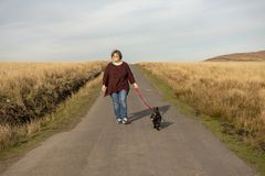 Mature woman and terrier dog walking. On a mountain road stock photography