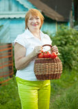 Mature woman with tomatoes Stock Images