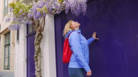 Mature Woman Tourist Smelling Purple Flower Blooming On Tree Branch. 4K stock video