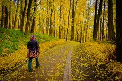Mature woman walking Nordic Walk in a park Royalty Free Stock Photo