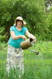 Mature woman is watering stock photography