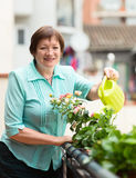 Mature woman with watering-can taking care of plants Royalty Free Stock Photos